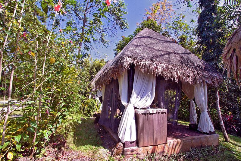 Nurture Wellness Village Resort and Spa